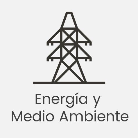 Webinar: Oportunidades en los sectores de Energía y Medio Ambiente en Latinoamérica