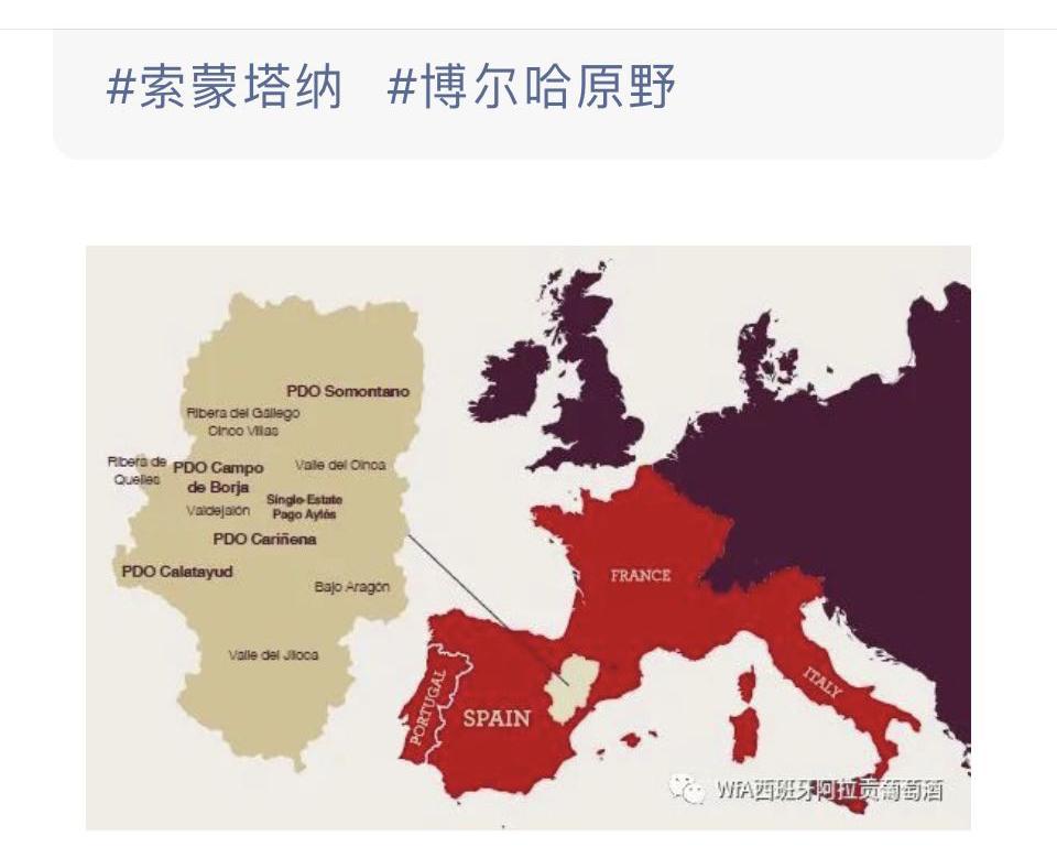 Los vinos aragoneses se promocionan en WeChat, la principal red social china